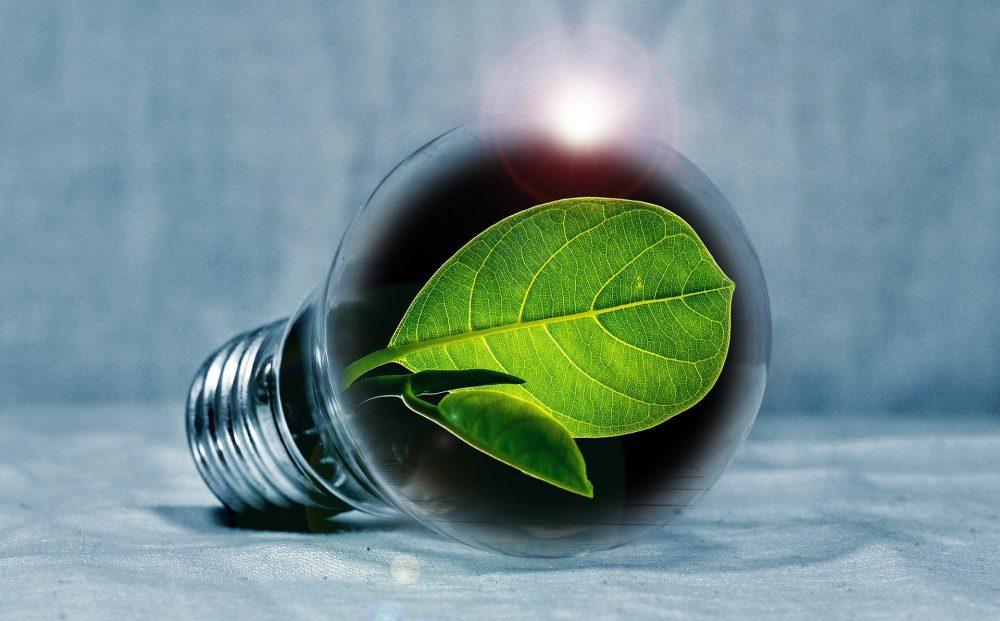 Hoe kun je als ondernemer het beste besparen op energie